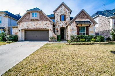 Pinehurst Single Family Home For Sale: 514 Arbor Point Court