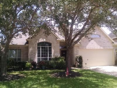 Pearland Single Family Home For Sale: 3805 Somerville Lake Court