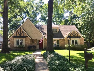 Houston Single Family Home For Sale: 735 Bison Drive