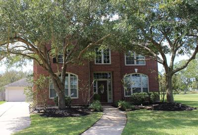Sugar Land Single Family Home For Sale: 8502 Chipping Rock Drive