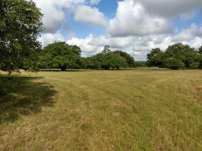 Austin County Country Home/Acreage For Sale: 123 Schwanbeck Road