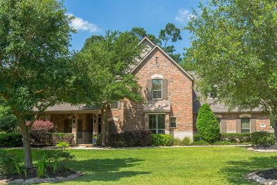 Conroe Single Family Home For Sale: 13244 Autumn Mist Lane