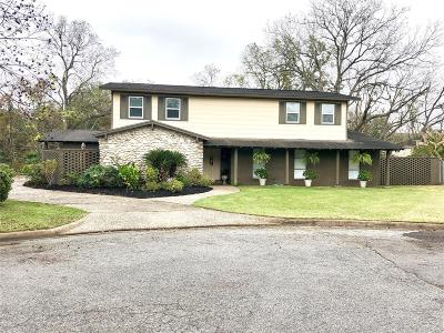 Bay City Single Family Home For Sale: 6 Lazy Lane