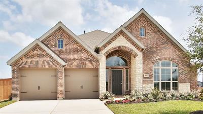 Manvel Single Family Home For Sale: 5223 Blue Canoe Road