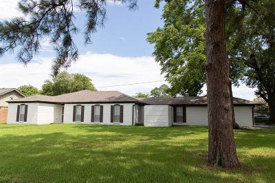 Houston Single Family Home For Sale: 11102 Hazelhurst Drive