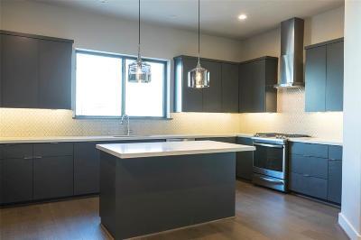 Houston Single Family Home For Sale: 4211 Allen Street