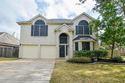 Sugar Land Single Family Home For Sale: 1147 Cambrian Park Court