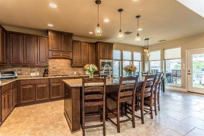 Pearland Single Family Home For Sale: 3020 Sunrise Run Lane