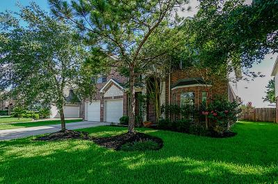 Houston Single Family Home For Sale: 17318 Chestnut Bluff Drive