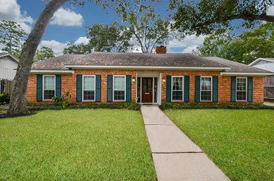 Houston Single Family Home For Sale: 10227 Candlewood Drive