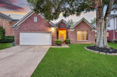 Pearland Single Family Home For Sale: 4901 Chrissie Drive