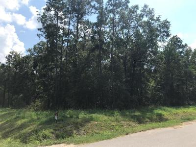 Residential Lots & Land For Sale: 996 Runner Drive