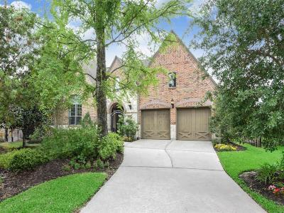 The Woodlands Single Family Home For Sale: 119 W Crystal Canyon Court W
