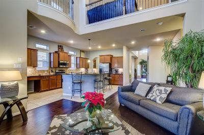Conroe Single Family Home For Sale: 131 Fields View Court