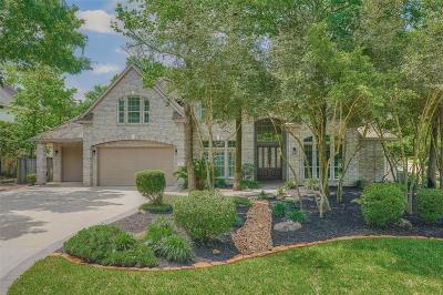 The Woodlands Single Family Home For Sale: 27 Snow Pond Place