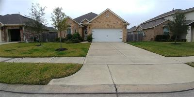 Hockley Single Family Home For Sale: 16011 Mark Crest Drive