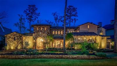 The Woodlands Single Family Home For Sale: 15 N Badger Lodge Circle