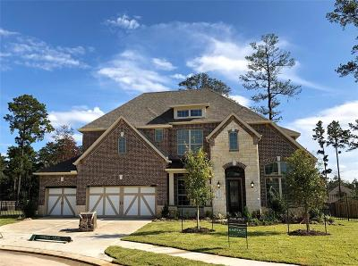 Conroe Single Family Home For Sale: 14015 S Evergreen Ridge Court