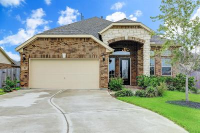 League City Single Family Home For Sale: 414 Wood Forest Drive