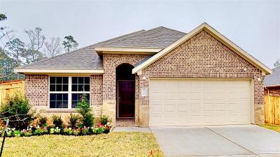 Single Family Home For Sale: 18218 Octavio Frias Trail