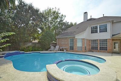 Katy Single Family Home For Sale: 22419 Lauras Glen Ct