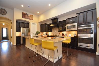 Katy Condo/Townhouse For Sale: 24130 Tapa Springs Lane Lane