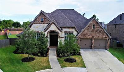 Pearland Single Family Home For Sale: 13802 Morgan Bay Drive