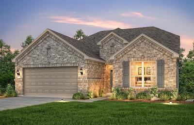 Katy Single Family Home For Sale: 5206 Gerent Lane
