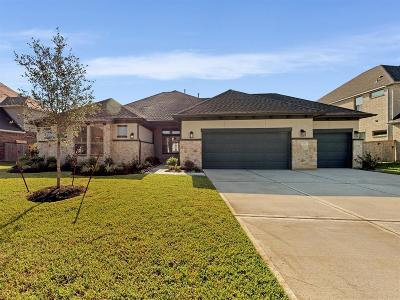 Katy Single Family Home For Sale: 1315 Windy Thicket Lane