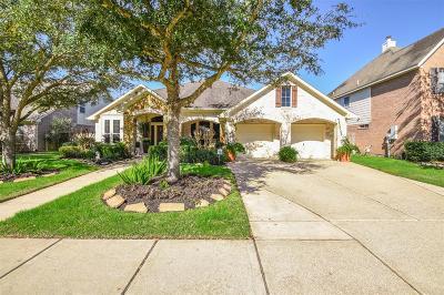 League City Single Family Home For Sale: 1004 Azalea Pointe