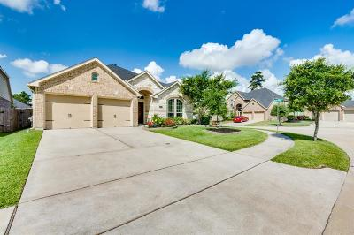 Houston Single Family Home For Sale: 12906 Buchanan Oaks Lane