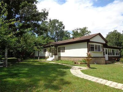 Single Family Home For Sale: 30634 Lake Circle Lane