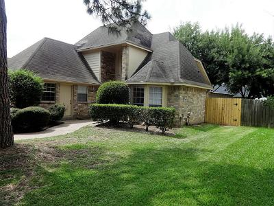 Katy Single Family Home For Sale: 19934 Fort Stanton Drive
