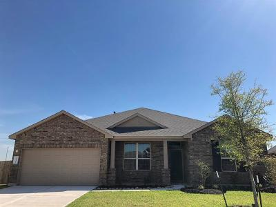 Katy Single Family Home For Sale: 4626 Santa Sienna Drive