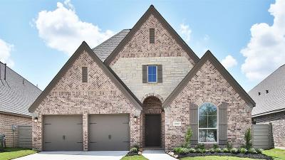 Manvel Single Family Home For Sale: 2232 Blackhawk Ridge Lane