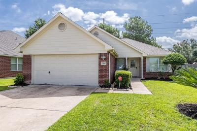 Katy Single Family Home For Sale: 3306 Rainport Drive