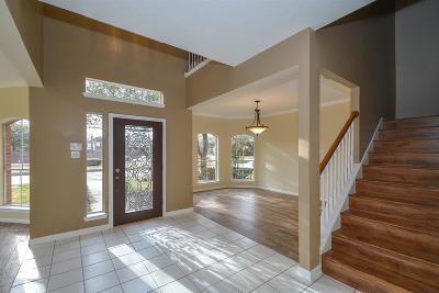 Katy Single Family Home For Sale: 4223 Perdido Bay Drive