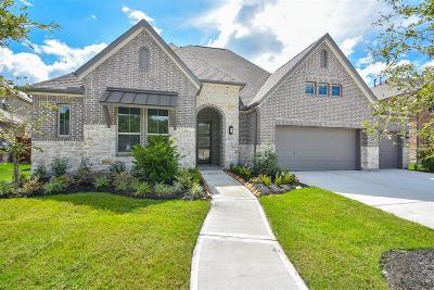 Porter Single Family Home For Sale: 25215 Azel Shore Court