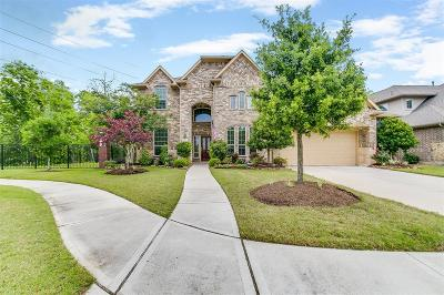 Sugar Land Single Family Home For Sale: 6022 Turner Shadow Lane