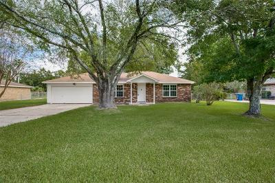 Dickinson Single Family Home For Sale: 3038 N Meadow Lane
