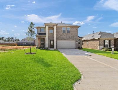 Single Family Home For Sale: 313 Terra Vista Circle