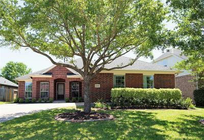 Shadow Creek Ranch Single Family Home For Sale: 2509 Rusting Creek Drive