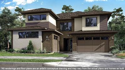 Sugar Land Single Family Home For Sale: 6503 Rawdon Stream Lane