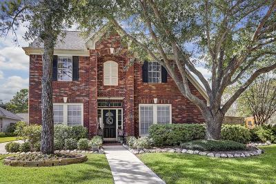 Katy Single Family Home For Sale: 2102 Amber Glen Lane