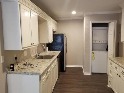 Galveston Rental For Rent: 1822 Avenue M 1/2 #4