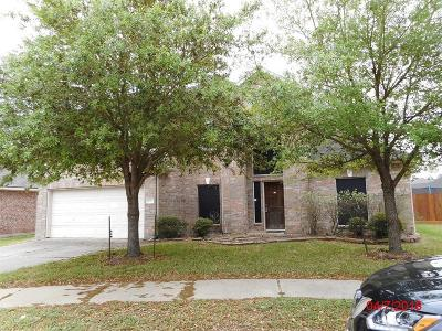 Tomball Single Family Home For Sale: 18203 Memorial Springs Court