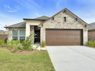 Katy Single Family Home For Sale: 4434 Windflower Valley Lane