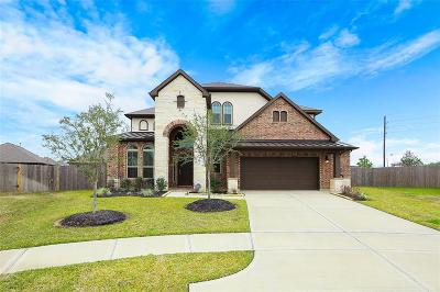 Katy Single Family Home For Sale: 28802 Emerald Valley Court