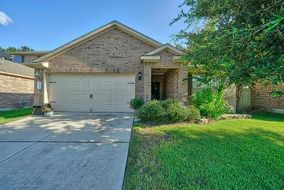 Conroe Single Family Home For Sale: 10308 Stone Gate Drive