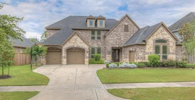 Sugar Land Single Family Home For Sale: 6119 N Tamarino Park Lane